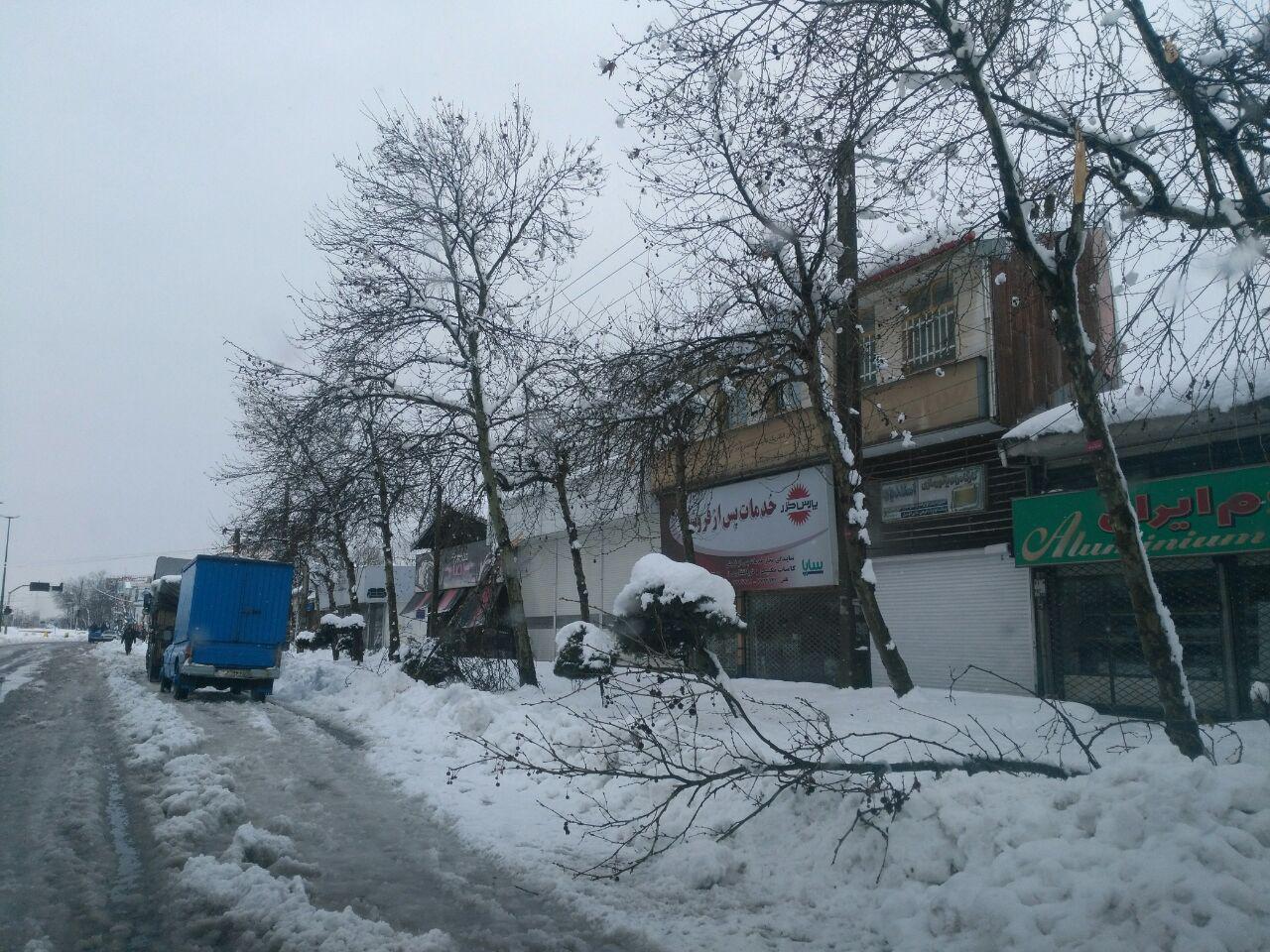 اختصاصی/تصاویر آسیب رسیدن به برخی اموال عمومی رشت پس از بارش برف