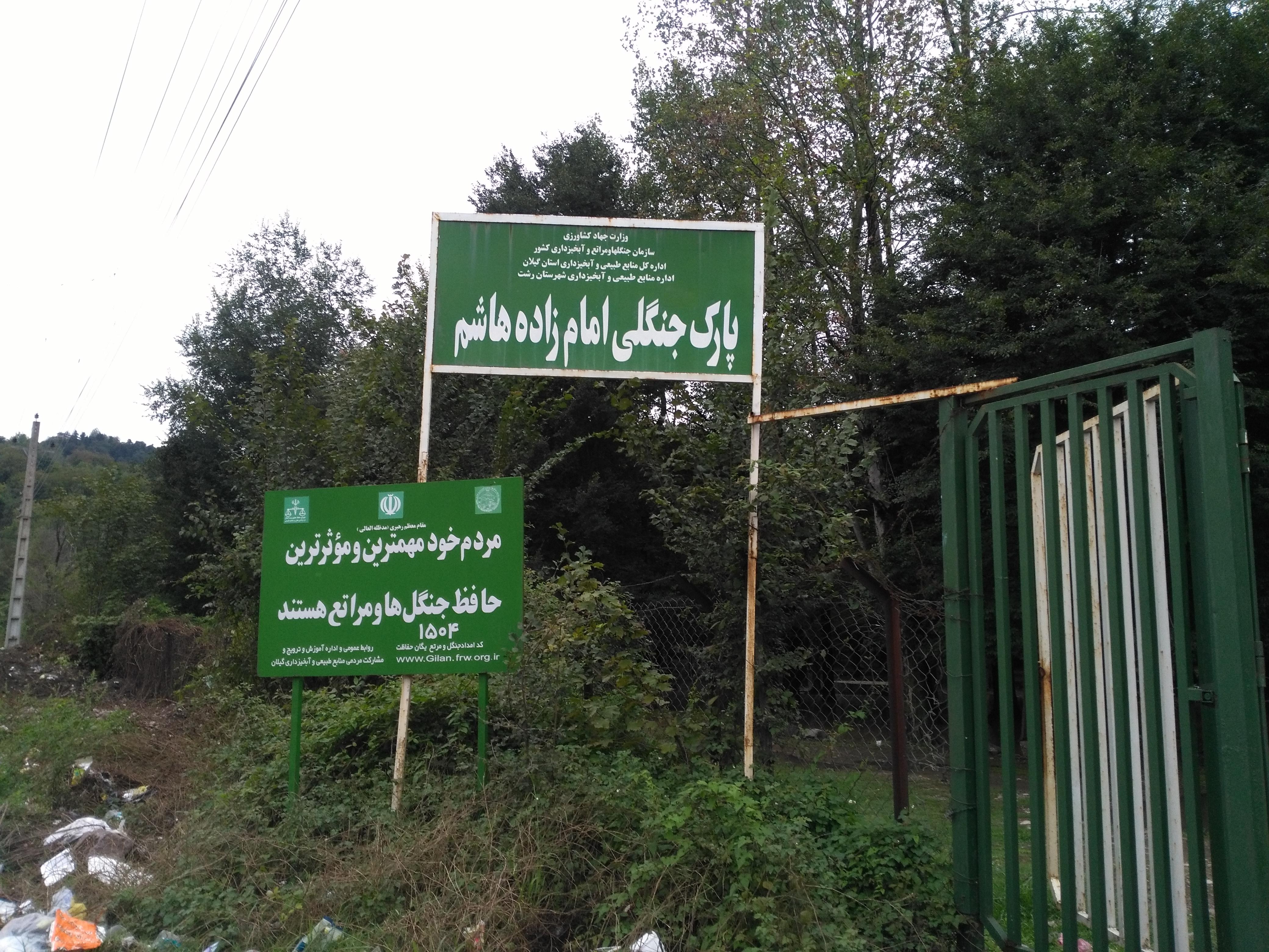 اختصاصی/استاندار گیلان به داد وضعیت فاجعه بار پارک جنگلی امام زاده هاشم رشت برسد+تصاویر